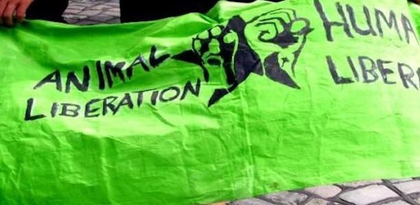 """Agitare Bene Cafe am 2. Februar: """"One struggle – one fight!"""" – Mit der Tierbefreiung zur sozialen Revolution?"""